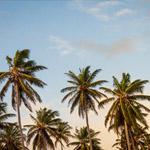 10 slimme bespaartips voor de zomer! ☀