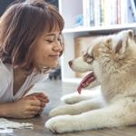 Tips om te besparen op de kosten van je huisdieren