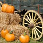 Bespaar met de beste Halloween kortingscodes en acties van dit moment