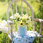 Wil je jouw tuin voordelig lenteklaar maken? Dan mag je deze aanbiedingen niet missen!