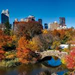 De beste en meest voordelige stedentrip tips voor dit najaar