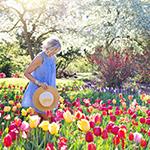 Haal goedkoop de lente in huis