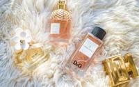 Over Perfumetrader
