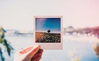 Over Polaroid