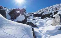 Over Snowrental