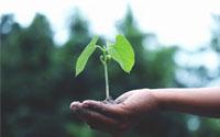 Over Tuinvoordeel