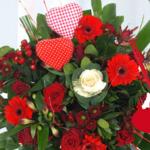 Verras jouw valentijn met rode rozen vanaf €2,50 | Verstuureenbloemetje.nl