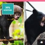 Bezoek dierenpark Zie-ZOO in Volkel nu met -40% korting via ActievandeDag