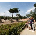 Bestel tickets voor Safaripark Beekse Bergen met 25% korting | AD Webwinkel