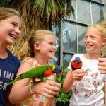 Tripper geeft 34% korting op entreetickets voor Vogelpark Avifauna