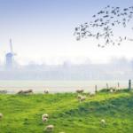 Pak 56% korting op een All Inclusive reis naar Zeeland | TravelBird
